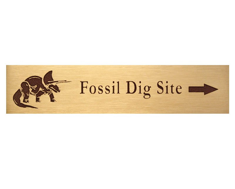 Bronze fossil dig site plaque with image of triceratops