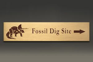 bronze-plaque-fossil-dig-web